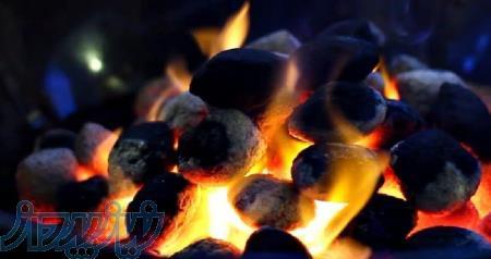 فروش زغال فشرده -ذغال باربیکیو - ذغال لیمو مخصوص صادرات