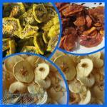 دستگاه خشک کن میوه و سبزیجات
