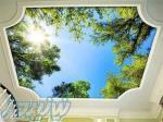 اجرای آسمان مجازی در ساری ، قیمت سقف کشسان ساده