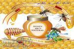 فروش عسل ،بره موم ،ژله رویال،کندو با جمعیت،ادوات زنبورداری