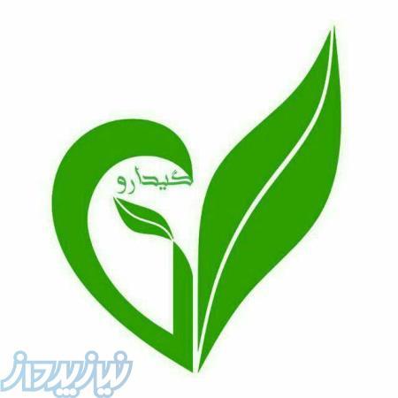 فروشگاه اینترنتی تولید و بسته بندی گیاهان طبیعی و مواد آرایشی و بهداشتی گیدارو