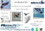 شاخک های دفع پرندگان مزاحم