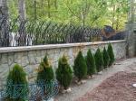 ساخت حفاظ حفاظ دیوار حفاظ شاخ گوزنی حفاظ بوته ای حفاظ لاله ای حفاظ لیلیوم