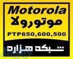 فروش ویژه موتورولا PTP600 - PTP 500 - PTP650
