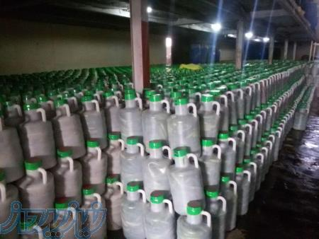 تولید و فروش خیارشور