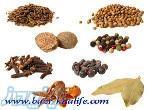 فروش انواع بذر و دانه