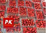 دستگاه سورت و بسته بندی میوه و سبزیجات تازه
