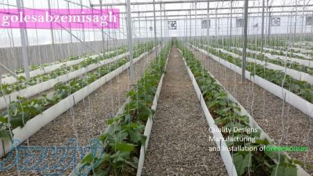 ساخت گلخانه هیدروپونیک-فروش گلخانه -قیمت سازه گلخانه
