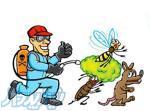 گزوه تخصصی سمپاشی پایانه محیط پاک