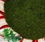 فروش انواع سبزیجات خشک و معطر ارگانیک (طبس)