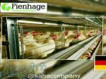 قفس مرغ تخمگذار و پولت