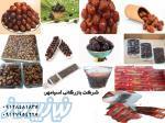 عرضه مستقیم انواع خرمای ایران زمین