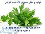 تولید و توزیع سبزی پاک شده(شرکتی)