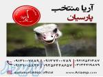 پیش فروش جوجه شترمرغ 1 ماهه در اصفهان