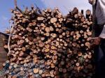 خريدار انواع چوب
