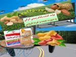 تولید کننده بادام زمینی ایرانی
