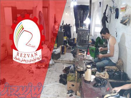 تولیدی کفش I گروه تولیدی کفش ارزان قیمت I تنوع بیش از 500 محصول کفش