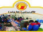 کارخانه قطعه بندی،بسته بندی و فرآوری گوشت مرغ و گوشت قرمز طالع پروتئین