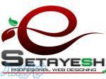 طراحی تخصصی سایت