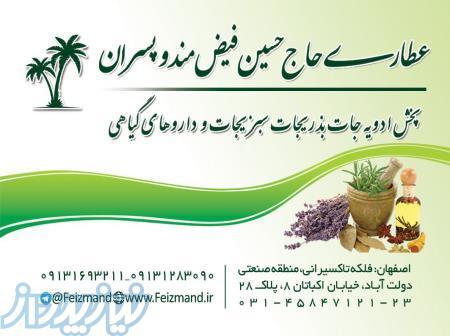 عطاری حاج حسین فیض مند و پسران (عمده فروشی )