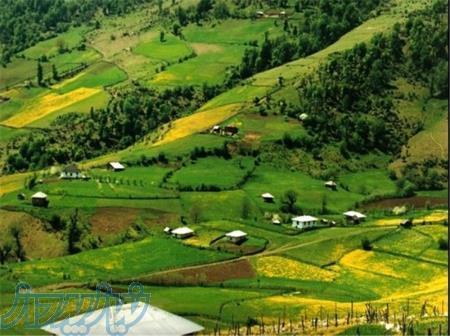 فروش امن زمین های مسکونی، باغی و زراعی در استان گیلان (لاهیجان، لنگرود و حومه) با قیمت های استثنائی