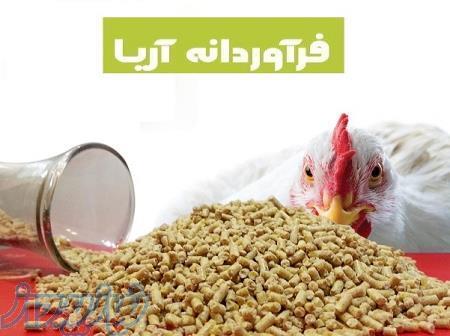 فروش دان مرغ بصورت کلی و جزئی